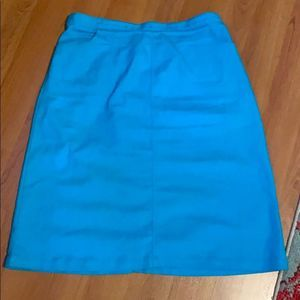 D&Co Turquoise A-Line Skirt